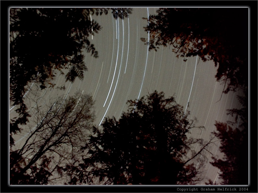 "photo ""A Celestial Spin throught the Forest"" tags: landscape, night"