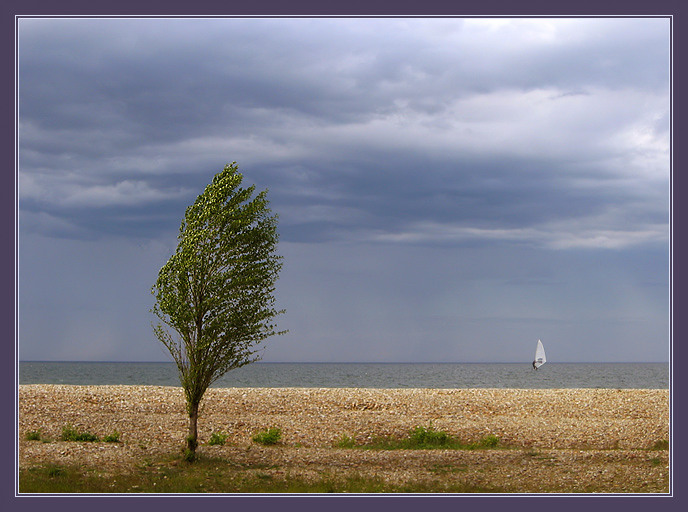 "photo ""A lone white sail shows for an instant ..."" tags: nature,"