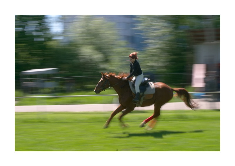"photo ""Gallop"" tags: reporting,"