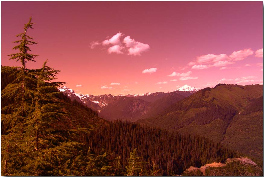 "photo ""Great Northwest"" tags: landscape, forest, mountains"