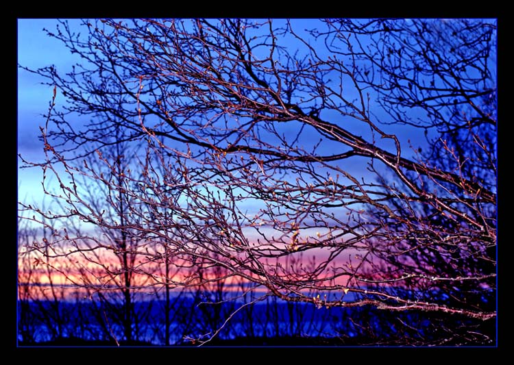 "фото ""***"" метки: разное, пейзаж, закат"