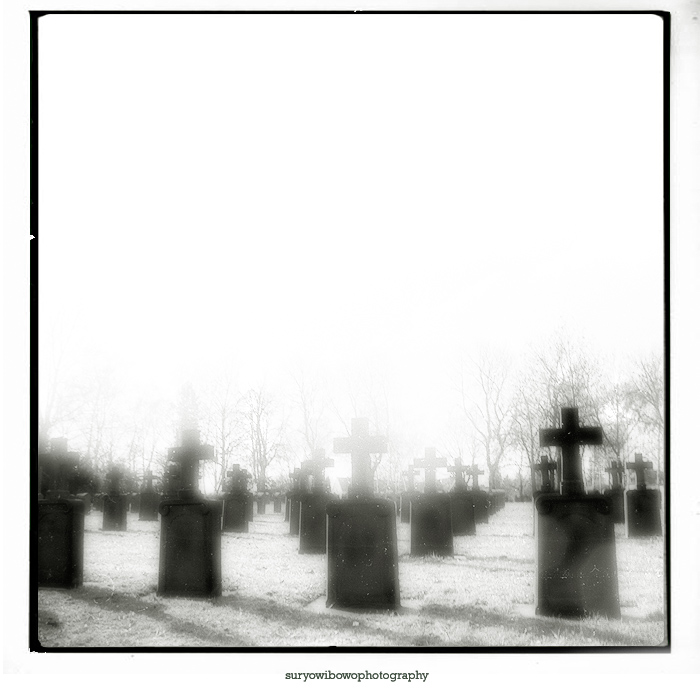 "photo ""[ ††† ]"" tags: black&white,"