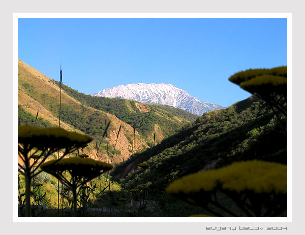 "photo ""Chimgan"" tags: landscape, mountains"