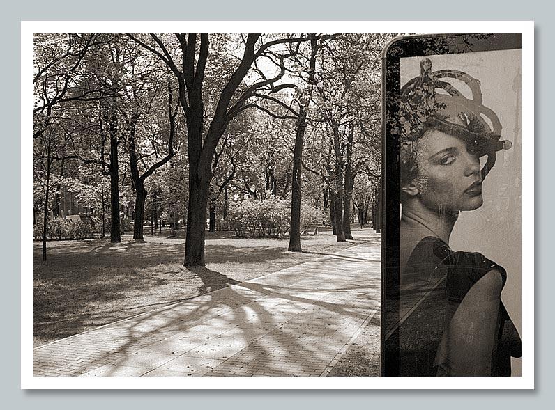 "фото ""###"" метки: черно-белые, пейзаж, лето"