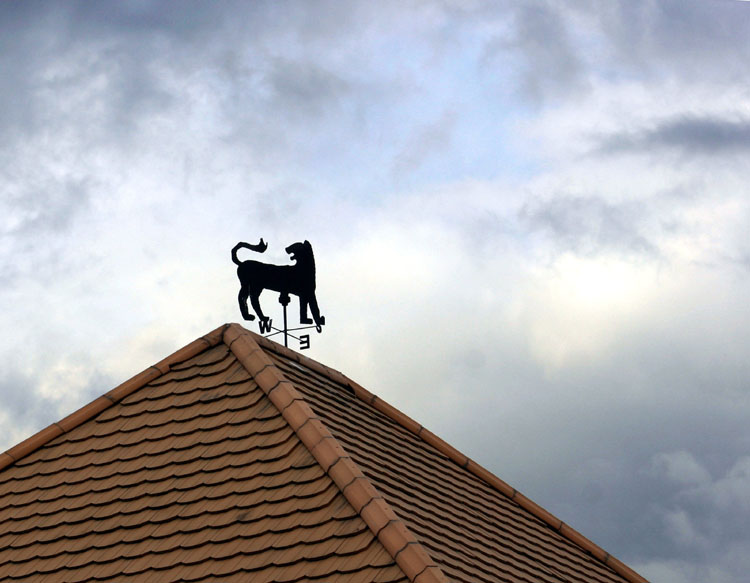 "photo ""On the roof"" tags: architecture, landscape,"