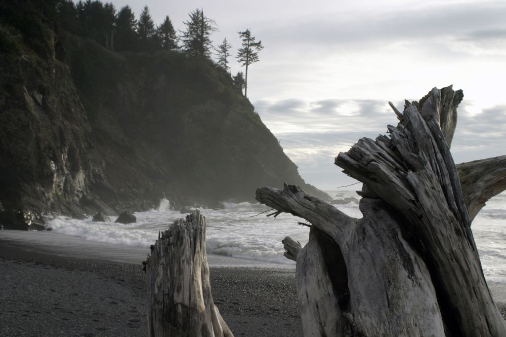 "photo ""La Push"" tags: nature,"