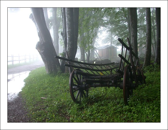 "photo ""An Old Cart"" tags: landscape, clouds, forest"