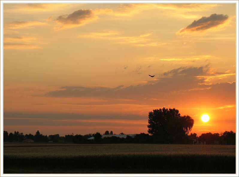 "photo ""Sunrise 19.6.2004"" tags: landscape, sunset"