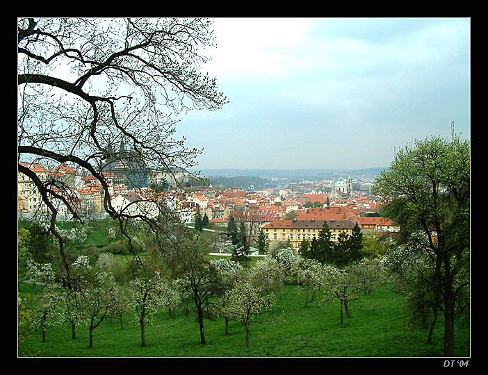 "photo ""blossoming Prague"" tags: travel, architecture, landscape, Europe"