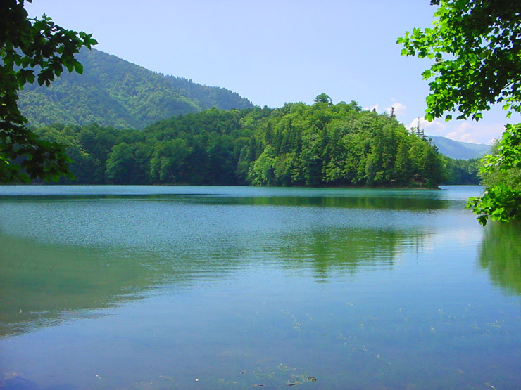 "photo ""Wood lake 2."" tags: travel, landscape, Europe, water"