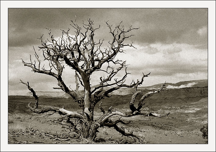 "photo ""Capitol Reef"" tags: travel, landscape, North America, mountains"