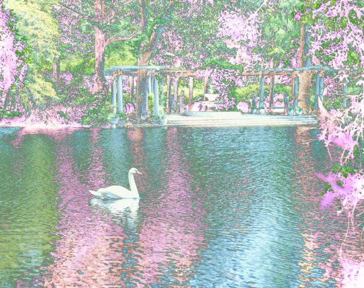 "photo ""I Dream In Color"" tags: montage, landscape, spring"