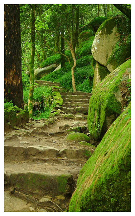 "photo ""Natural Stairs"" tags: landscape, mountains"