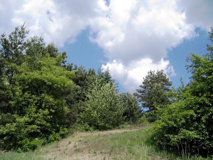 """фото """":-)"""" метки: пейзаж, горы"""