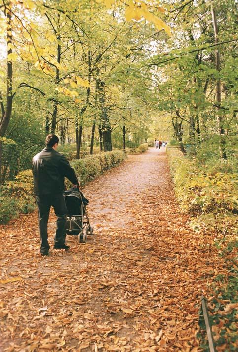 "photo ""Autumn of life"" tags: landscape, autumn"