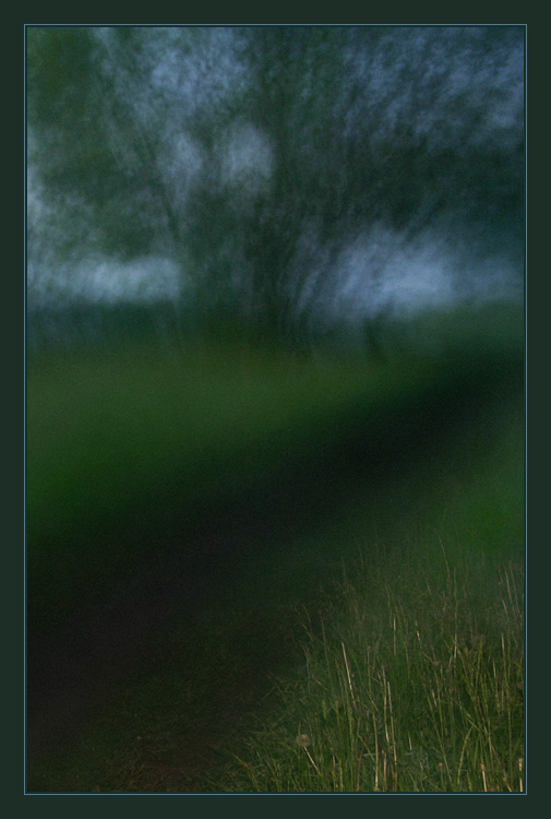 "photo ""Night path"" tags: landscape, forest, night"