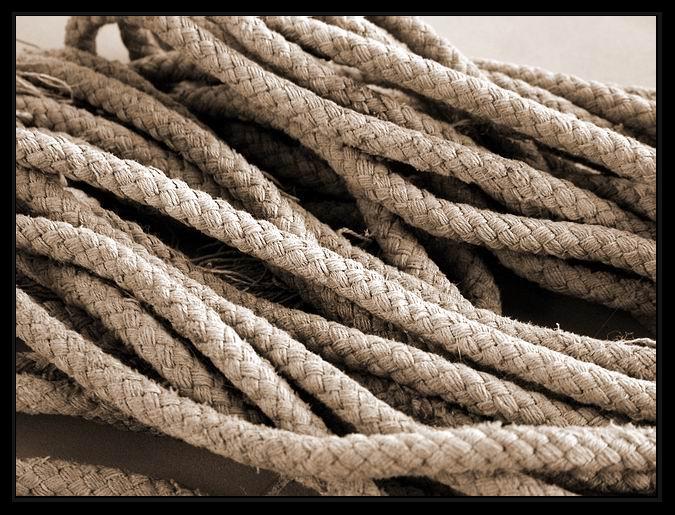 "photo ""Cords..."" tags: macro and close-up,"