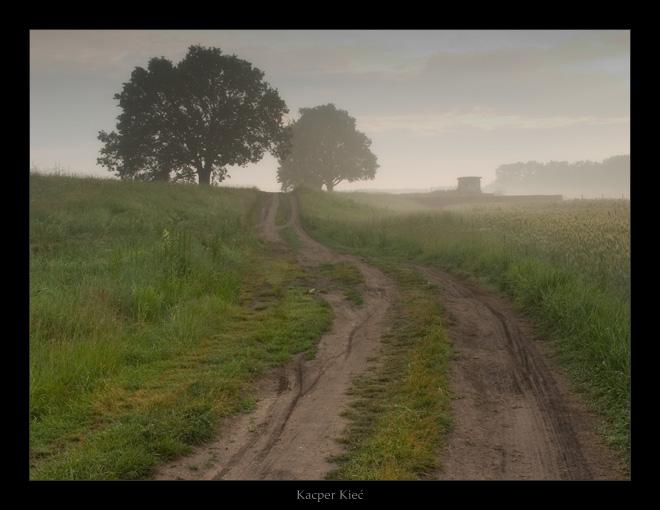 "фото ""sleepy fields"" метки: пейзаж, закат, лето"
