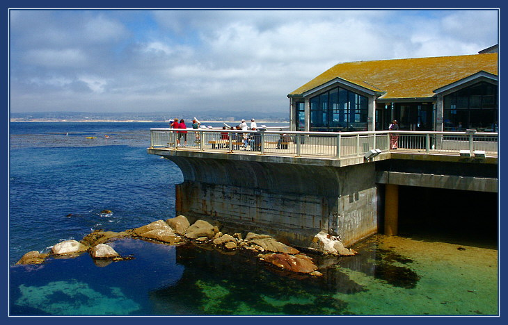 "photo ""Monterey, California"" tags: still life,"