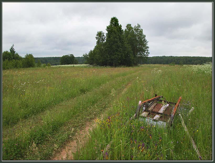 "photo ""On a roadside"" tags: landscape, genre, summer"