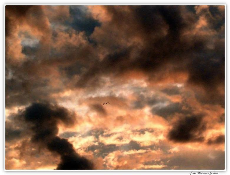 "photo ""The mad sky."" tags: landscape, clouds, sunset"