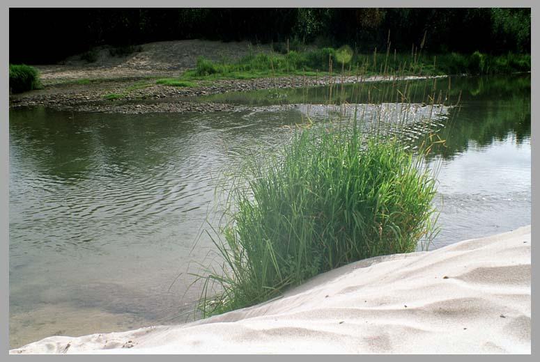 как сделать фото реки плитки для