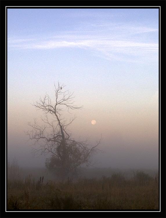 """фото """"Epigraph"""" метки: разное, пейзаж, осень"""