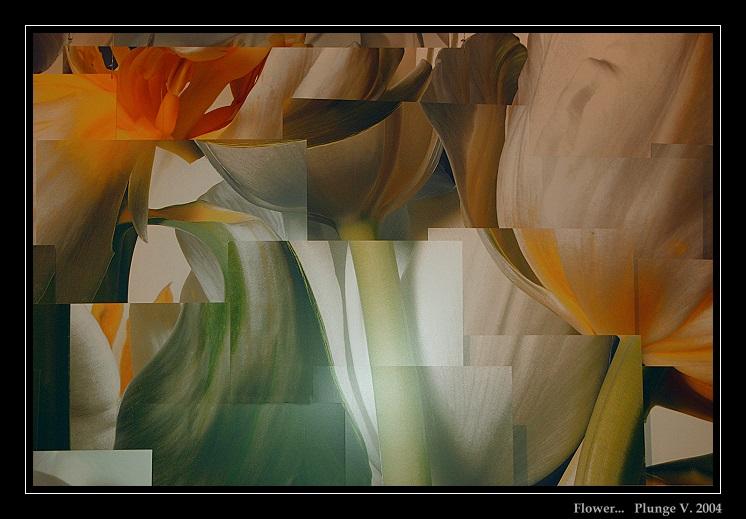 "фото ""... flower ..."" метки: природа, фотомонтаж, цветы"