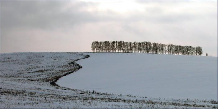 """фото """"Border"""" метки: природа, жанр,"""