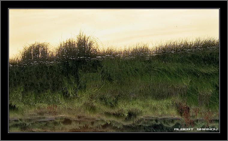 """фото """"Волшебные травы"""" метки: пейзаж, лето"""