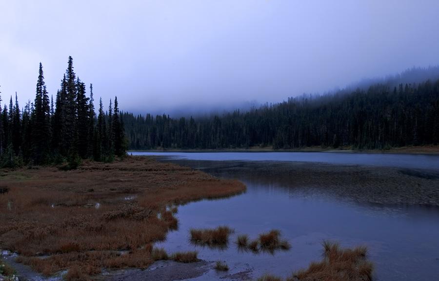 "фото ""Late Autumn Morning"" метки: пейзаж, лес"