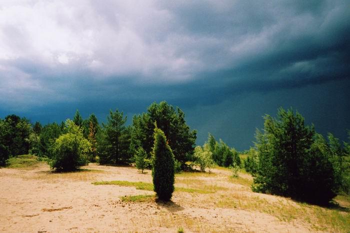 """фото """"настроение"""" метки: природа, пейзаж, лето"""