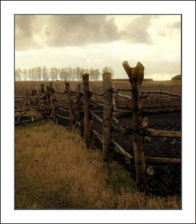 """фото """"+++"""" метки: пейзаж, природа, осень"""