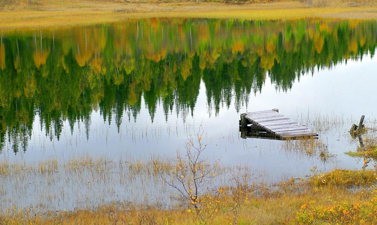 "фото ""autumn colors refections"" метки: природа,"