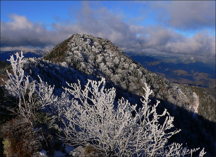 """фото """"в белом"""" метки: пейзаж, горы, лес"""