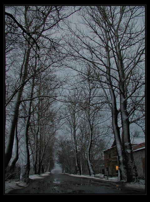 """фото """"Оттепель. Долгая дорога"""" метки: пейзаж, зима"""