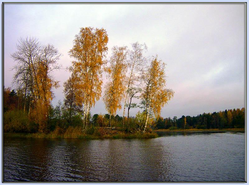 """фото """"*"""" метки: пейзаж, лес, осень"""
