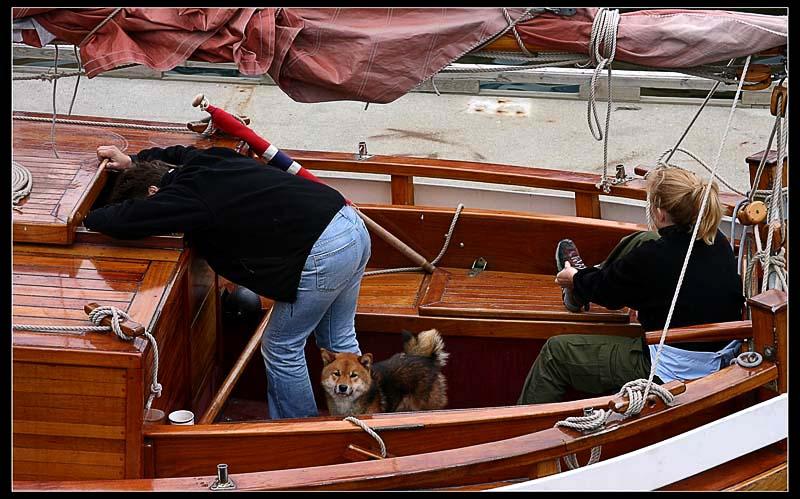выступают картинки трое в лодке прикол содержимое кастрюли