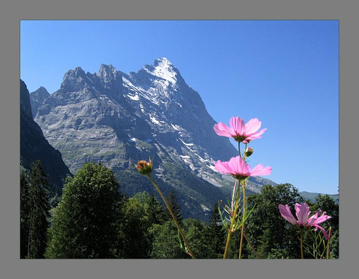 """фото """"Про горку"""" метки: пейзаж, путешествия, Европа, горы"""
