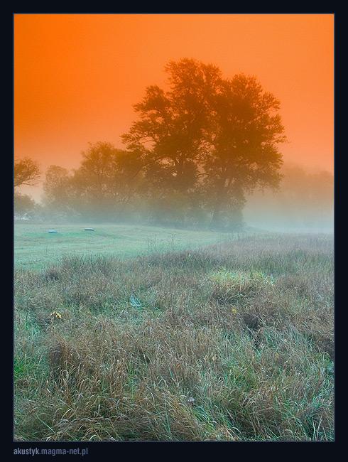 """фото """"fog 1"""" метки: пейзаж, осень"""