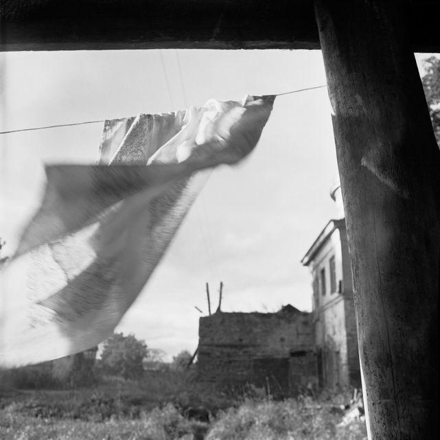 "фото ""Ветер"" метки: пейзаж, лето"