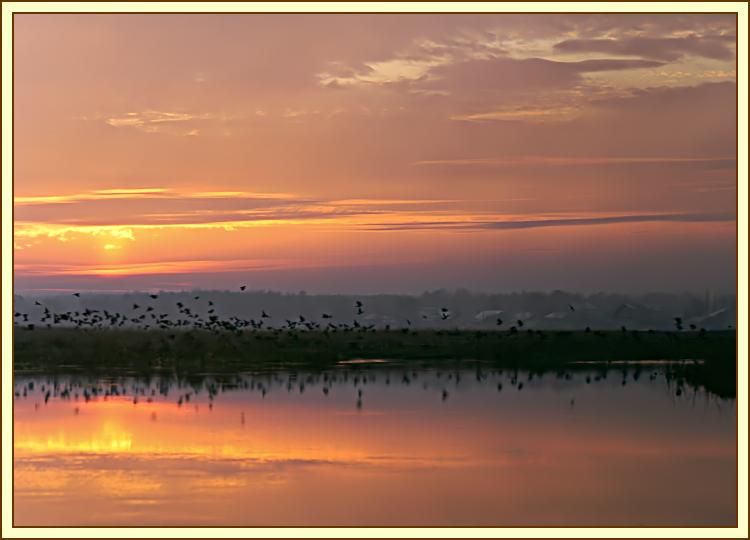 """фото """"Ноябрь. Туманный вечер (фото №2)."""" метки: пейзаж, вода, закат"""