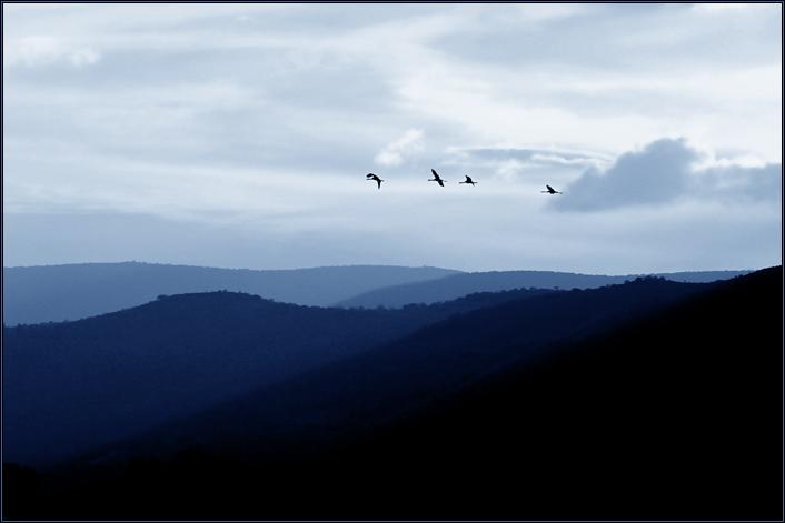 """фото """"свободный этюд в синеватых тонах (#5)"""" метки: пейзаж, природа,"""