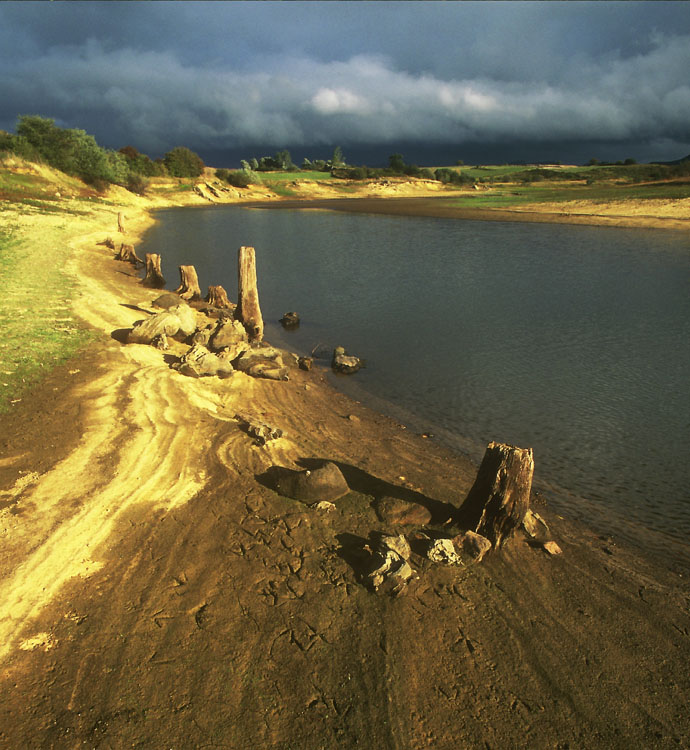 "фото ""Dead Trunks"" метки: пейзаж, закат"
