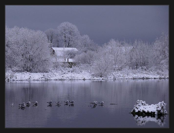 """фото """"холод"""" метки: пейзаж, вода, зима"""