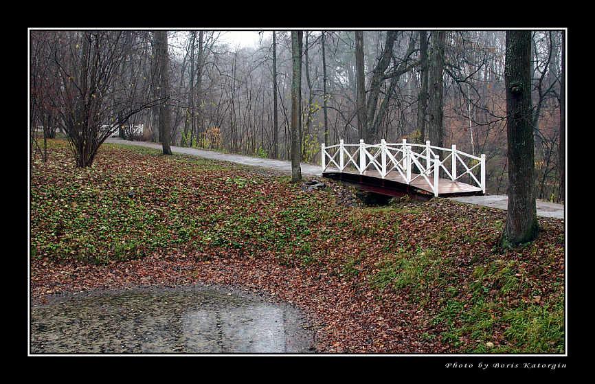 "фото ""Этюд поздней осени"" метки: пейзаж, лес, осень"
