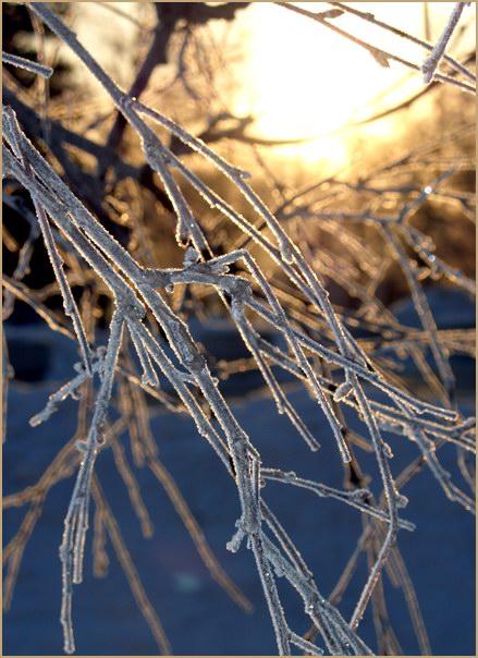 """фото """"Холодное утро. Понедельник  $-("""" метки: пейзаж, зима"""
