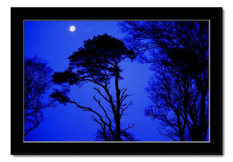 """фото """"midnight blues"""" метки: пейзаж, ночь"""