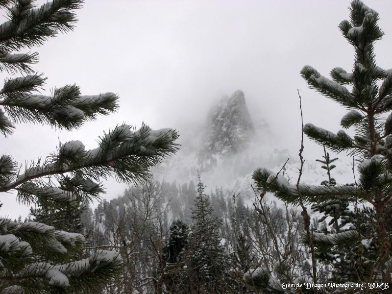 """photo """"Let it Snow !"""" tags: landscape, mountains, winter"""