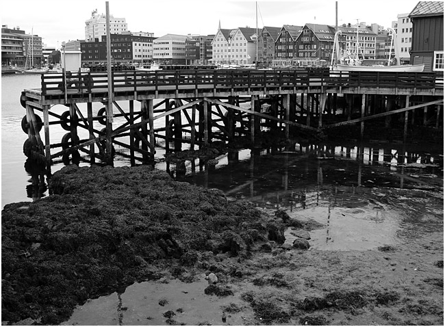 "фото ""Отлив."" метки: архитектура, черно-белые, пейзаж,"